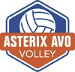Asterix Avo Volley